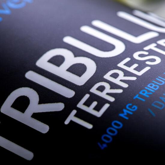Tribulus Terrestris - 60 tabletta - DARK - Nutriversum